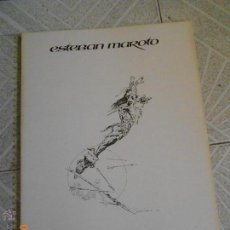 Cómics: COMIC: PORTAFOLIO ESTEBAN MAROTO 10 LAMINAS 40X28 COUCHE EXCELENTE ESTADO 1979 TARZAN BARBAROS LUJO. Lote 243935460