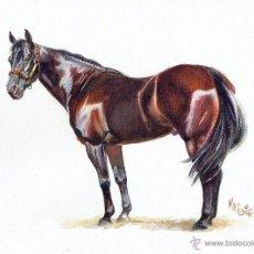 Cómics: DIBUJO ORIGINAL ACUARELA - JORDI MACABICH - HORSE WEST #1 - PVP 3.500€. Lote 49264120