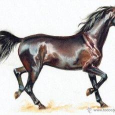 Cómics: DIBUJO ORIGINAL ACUARELA - JORDI MACABICH - HORSE WEST #2 - PVP 3.500€. Lote 49264122