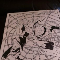 Cómics: SPIDERMAN SPIDER-MAN .PORTADA ALTERNATIVA. ACO. Lote 70295637