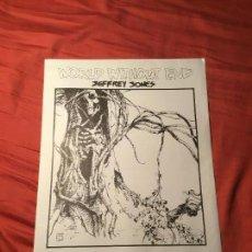 Cómics: JEFFREY JONES PORTFOLIO, WORLD WITHOUT END. Lote 100891191