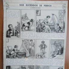 Cómics: PERTEGÁS, 30/11/1953, PÁGINA ORIGINAL DE JAIMITO: DOS SUCESOS DE PERROS (VERÍDICO). PLANCHA ORIGINAL. Lote 121366843