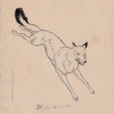 Cómics: EMILIO FREIXAS ARANGUREN (BARCELONA 1899 - 1976). DIBUJO ORIGINAL TINTA CHINA: LOBO. Lote 124508615