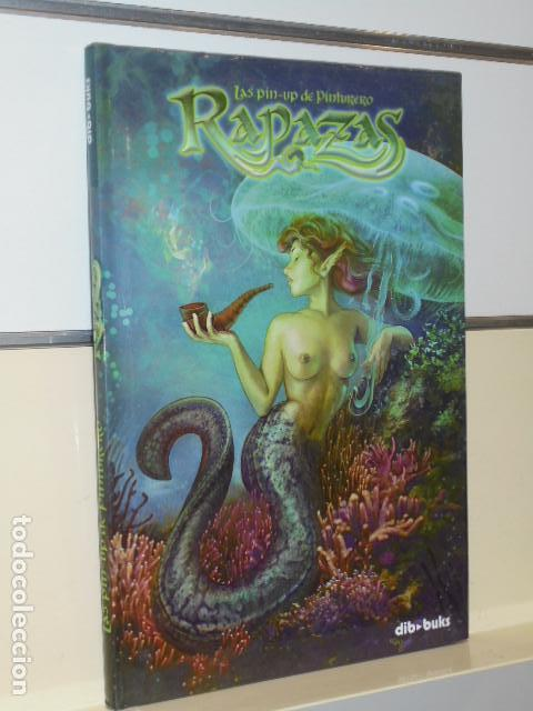 LAS PIN UP DE PINTURERO RAPAZAS - DIB-BUKS - OFERTA (Tebeos y Comics - Art Comic)