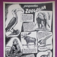 Cómics: DIBUJO ORIGINAL PLUMILLA, PEQUEÑA ZOOLOGIA, EDO MOSQUEDA, S25. Lote 147948466