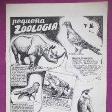 Cómics: DIBUJO ORIGINAL PLUMILLA, PEQUEÑA ZOOLOGIA, EDO MOSQUEDA, S11. Lote 147948490