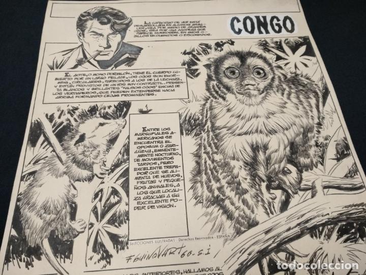 Cómics: SELECCIONES ILUSTRADAS - DIBUJO ORIGINAL - FIRMADO GUINOVART - 1960 - - Foto 3 - 170689665
