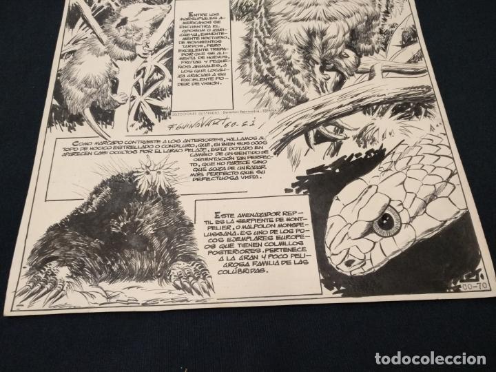 Cómics: SELECCIONES ILUSTRADAS - DIBUJO ORIGINAL - FIRMADO GUINOVART - 1960 - - Foto 4 - 170689665
