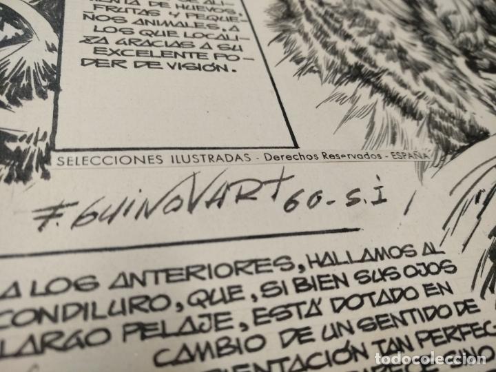 Cómics: SELECCIONES ILUSTRADAS - DIBUJO ORIGINAL - FIRMADO GUINOVART - 1960 - - Foto 5 - 170689665