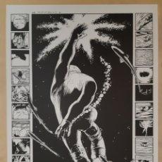 Cómics: PORTAFOLIOS CON SEIS PIEZAS ARTÍSTICAS DE CONCRETE, DE PAUL CHADWICK. Lote 178392928