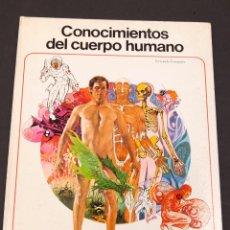 Cómics: FERNANDO FERNANDEZ - CONOCIMIENTOS DEL CUERPO HUMANO. Lote 207000363