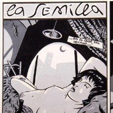 Cómics: LA SEMILLA SECRETA - AUTOR DESCONOCIDO - AÑOS 80-90. Lote 218267345