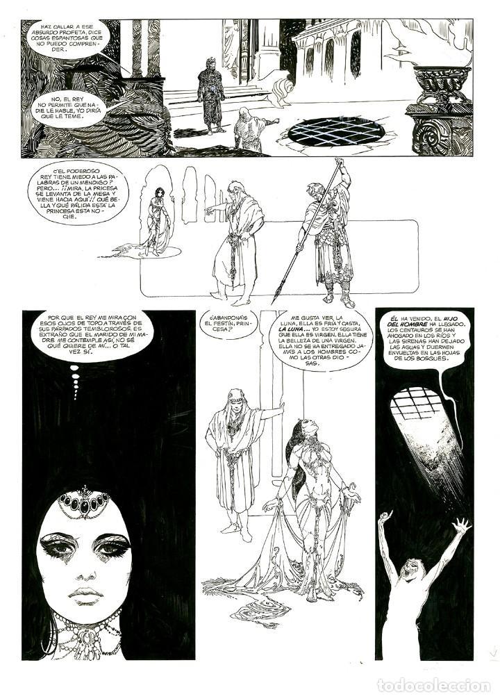 Cómics: Esteban Maroto - Portafolio Salomé 47/100 con Dibujo Original, ECCarteycoleccionismo 2019 - Foto 3 - 260101135