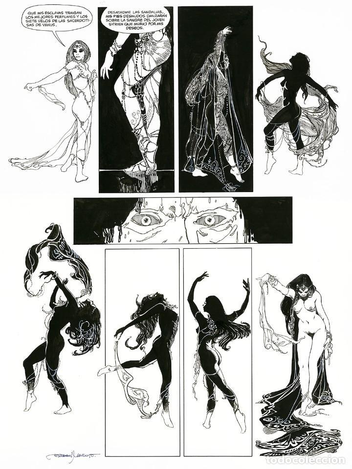 Cómics: Esteban Maroto - Portafolio Salomé 47/100 con Dibujo Original, ECCarteycoleccionismo 2019 - Foto 7 - 260101135