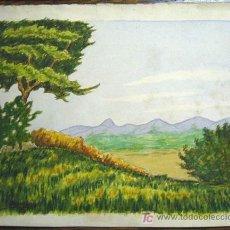 Arte: 1388.- DOS ACUARELAS DOS CARAS 17X21 ,,, PAISAJE,,, FIRMADO: S.AMARGANT. Lote 24351183