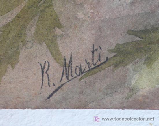Arte: pareja acuarelas de flores. firmado: R. MARTÍ - Foto 2 - 20819292