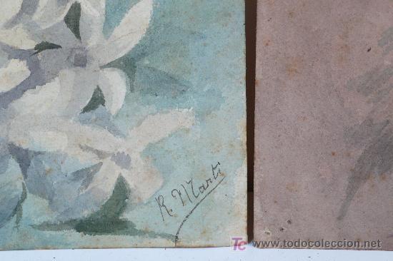 Arte: pareja acuarelas de flores. firmado: R. MARTÍ - Foto 4 - 20819292