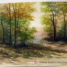 Arte: ACUARELA ORIGINAL. Lote 26576996