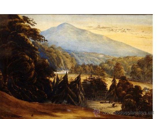 ESCUELA ALEMANA PRINCIPIOS DEL SIGLO XIX FIRMADO W.W.WILKINSON ACUARELA¡¡¡LIQUIDACIÓN!!!!!! (Arte - Acuarelas - Modernas siglo XIX)