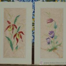 Arte: PAREJA DE ACUARELAS. FLORES. HÜBSCH. F.M. C 1950. Lote 24577299