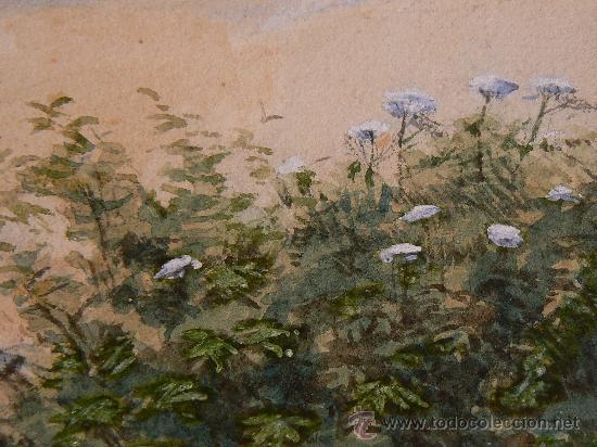 Arte: ACUARELA INGLESA SIGLO XIX - Foto 6 - 29752974