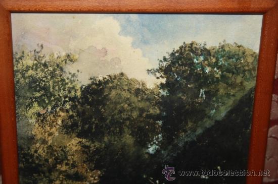 Arte: E2-015. ACUARELA DE RAMON AMADO Y BERNADET (1844-1888) REP. PAISAJE FLUVIAL CON CASCADA - Foto 2 - 35671474