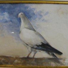Arte: PEPE CLAROS, ACUARELA, 10 X 14 CM.. Lote 41725827