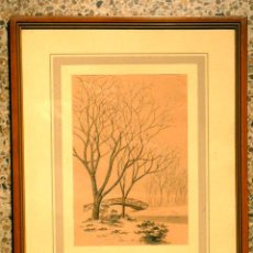 Arte: ACUARELA J.AROLAS 1903.. Lote 43777544