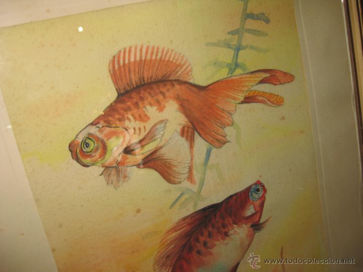 Arte: ANTIGUA ACUARELA. ESCUELA CHINA. - Foto 2 - 42878492