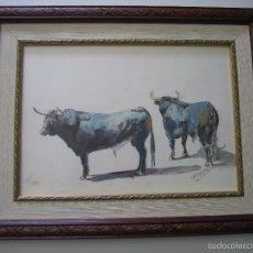 Arte: ACUARELA TAURINA DE F.FUENTES. MARCO 47X36,5CM. ACUARELA 36X26 CM. Lote 59636119