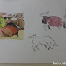 Arte: BALDRICH NAVARRO, ACUARELA ORIGINAL FIRMADA . TOROS. Lote 67443585