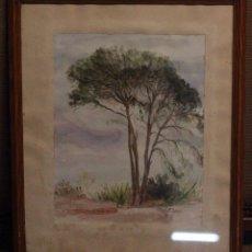 Arte: ENRIQUETA CARBONELL JORDÀ,1929, ALCOY ACUARELA ENMARCADA (38X45). Lote 121215311