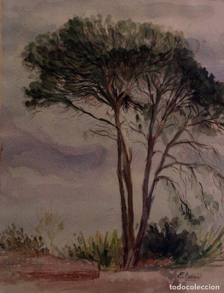 Arte: Enriqueta Carbonell Jordà,1929, Alcoy acuarela enmarcada (38x45) - Foto 2 - 121215311