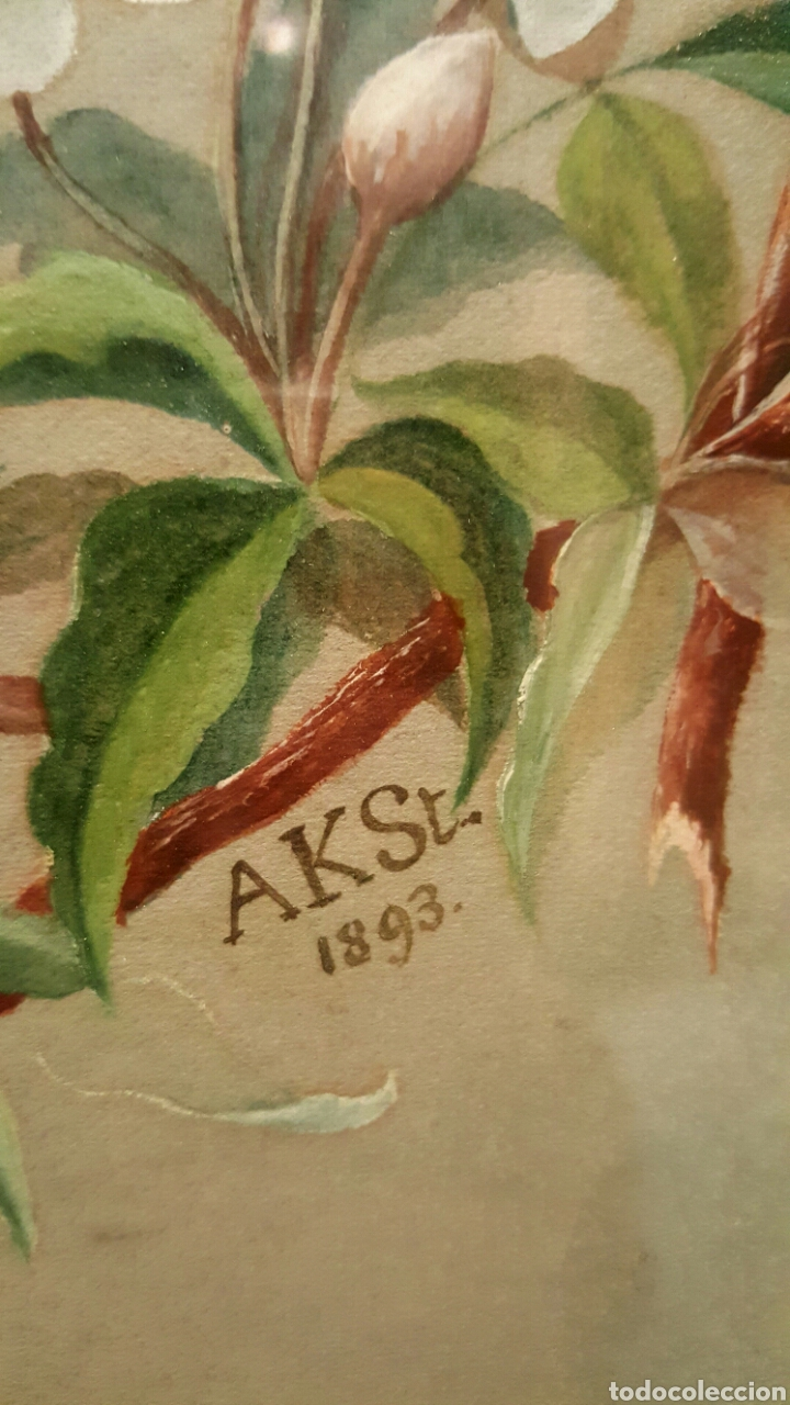 Arte: 1893 Antigua acuarela, s.XIX Alemania con fotografia,flores, La paz sea contigo. 40x50cm - Foto 7 - 85669982