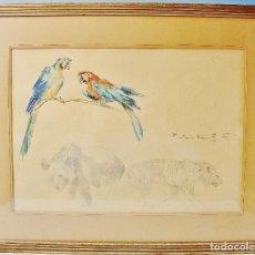 Arte: PAREJA DE LOROS, OSO Y TIGRE. DIBUJO A LÁPIZ Y ACUARELA. CARLOS BECQUER DOMINGUEZ (BARCELONA, 1889-1. Lote 85762288