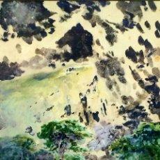 Arte: BOSQUE CON CASCADA. ACUARELA SOBRE PAPEL. FIRMADO. M. WEBER. EUROPA. 1914. Lote 94236655