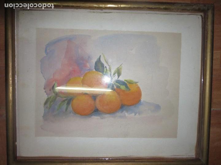Arte: ANTIGUA ACUARELA ORIGINAL PINTURA VALENCIANA RACIMO DE NARANJAS - Foto 3 - 110968075