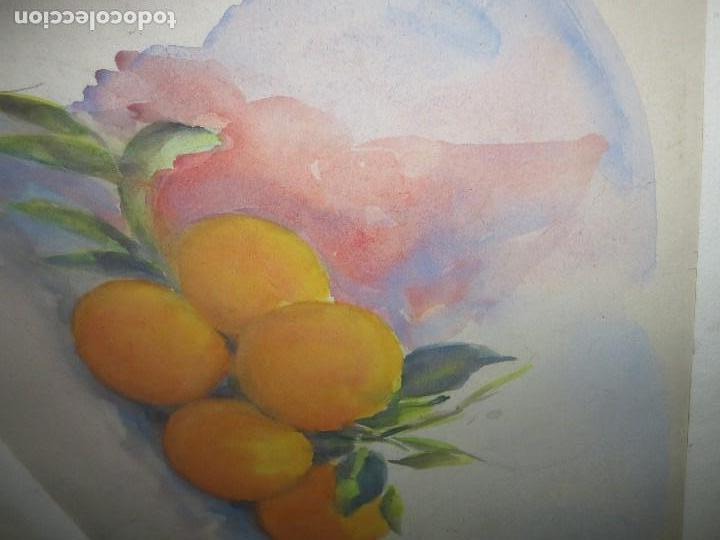 Arte: ANTIGUA ACUARELA ORIGINAL PINTURA VALENCIANA RACIMO DE NARANJAS - Foto 5 - 110968075
