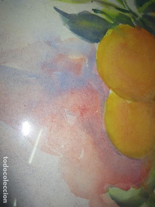 Arte: ANTIGUA ACUARELA ORIGINAL PINTURA VALENCIANA RACIMO DE NARANJAS - Foto 6 - 110968075