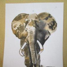 Arte: ACUARELA - ELEFANTE. Lote 129527871