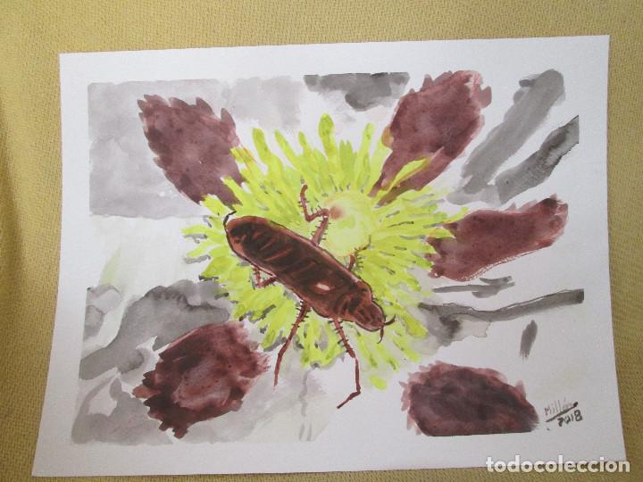 ACUARELA - CUCARACHA (Arte - Acuarelas - Contemporáneas siglo XX)