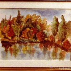 Arte: ARBOLEDA DE OTOÑO- ACUARELA FIRMADA- PINTADA POR ACUARELISTA C. FERRANDO. Lote 138395598