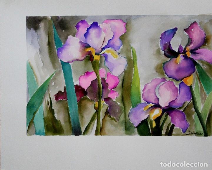 Arte: Iris obra de Luesma - Foto 2 - 138533858