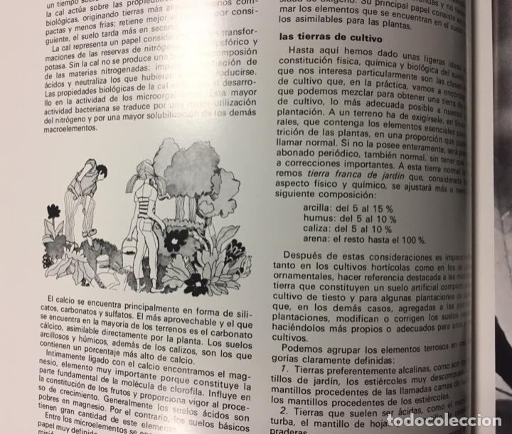 Arte: Boada, Pedro, ilustración original 1972 - Foto 2 - 123358683
