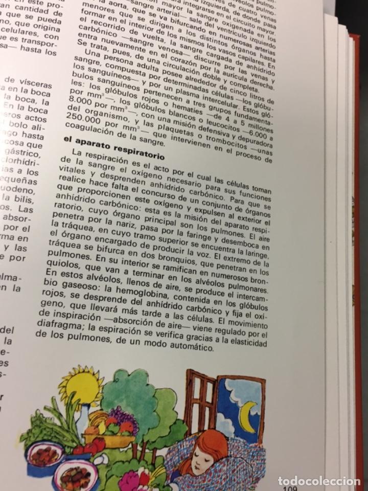 Arte: Boada, Pedro, ilustración original 1972 - Foto 4 - 123359967