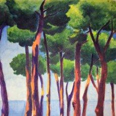 Arte: PINAR EN LA COSTA BRAVA. ACUARELA. DIBUJO CARBONCILLO. FIRMADO G. VILÁ. ESPAÑA. 1931. Lote 141102498