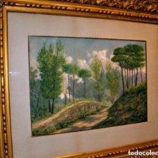Arte: ACUARELA/CARTULINA 56 X 38 CM. FIRMADA CON MONOGRAMA ES. CON MARCO.. Lote 153368862