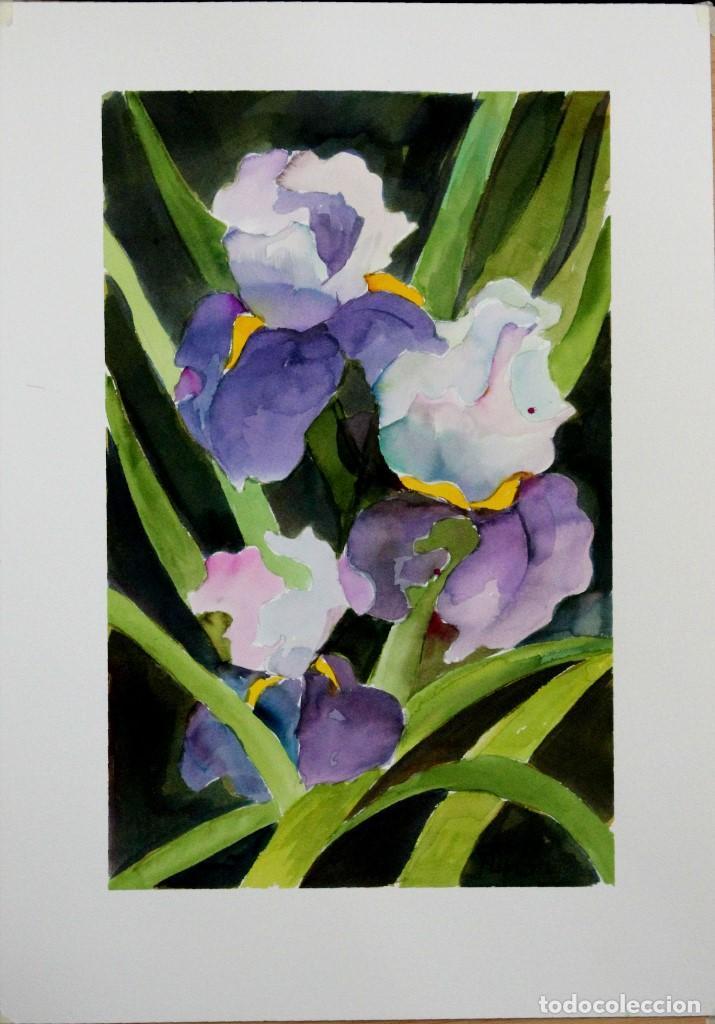 Arte: Iris y flores balncas obra de Luesma - Foto 2 - 153878302