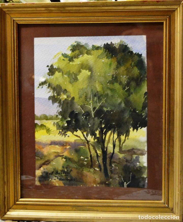 COLL BARDOLET (CAMPDEVANOL, 1912- VALLDEMOSA, 2007) (Arte - Acuarelas - Contemporáneas siglo XX)