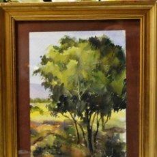 Arte: COLL BARDOLET (CAMPDEVANOL, 1912- VALLDEMOSA, 2007). Lote 161157586